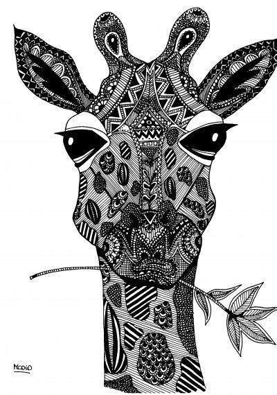 Free coloring pages round up for grown ups! | Giraffe